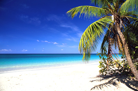 Les bons plans randonnée en Martinique