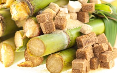 Le scandale du sucre aux Antilles